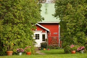 Vign_Life-of-Pix-free-stock-photos-wood-house-garden-nature-finland-escoveries